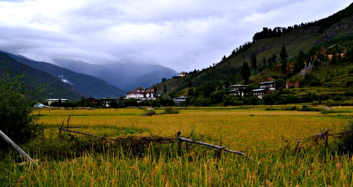 4 Things You Should Never Miss Experiencing in Bhutan