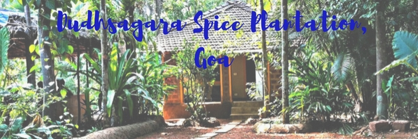 Dudhsagar Spice Plantation -  An Offbeat Experience in Goa