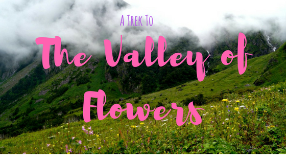 A Trek To Valley of Flowers - A Hike To The Paradise
