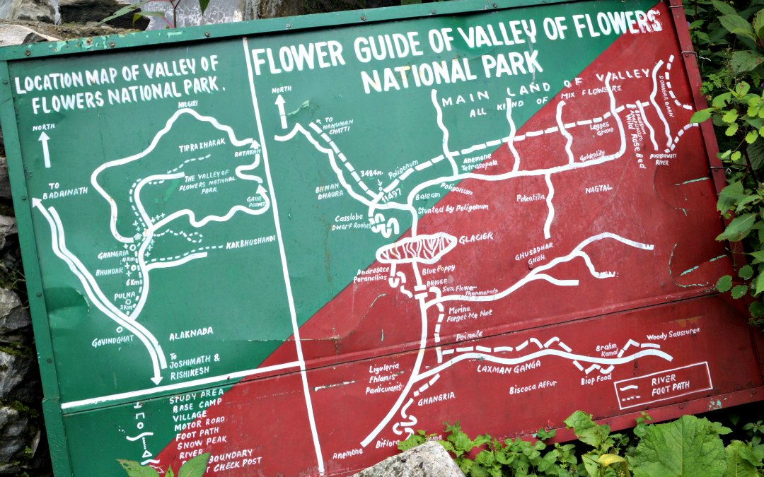 A DIY Guide to the Valley of Flowers and Hemkund