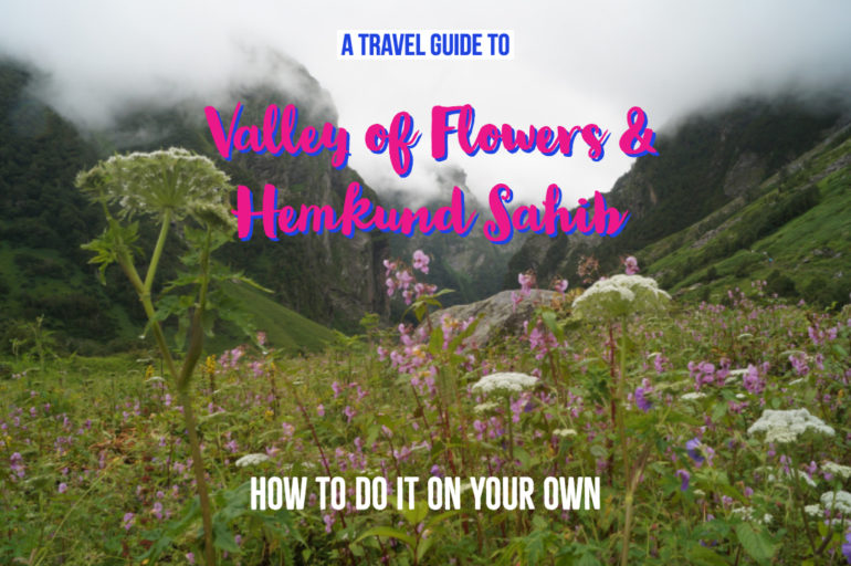 A Travel Guide to the Valley of Flowers Trek & Hemkund Sahib