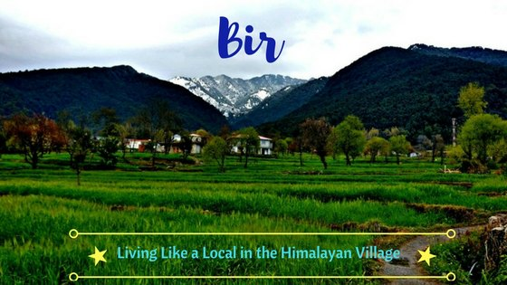 Bir Billing - Living Like a Local in the Serene Village of Kangra