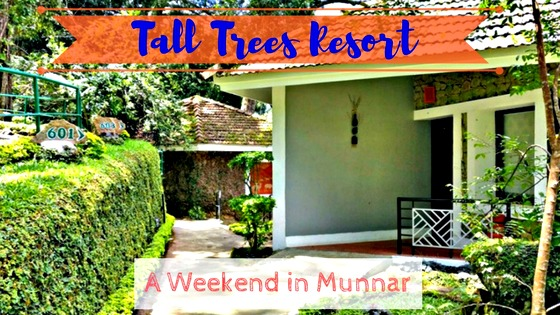 Tall Trees Resort - A Weekend Escapade in Munnar