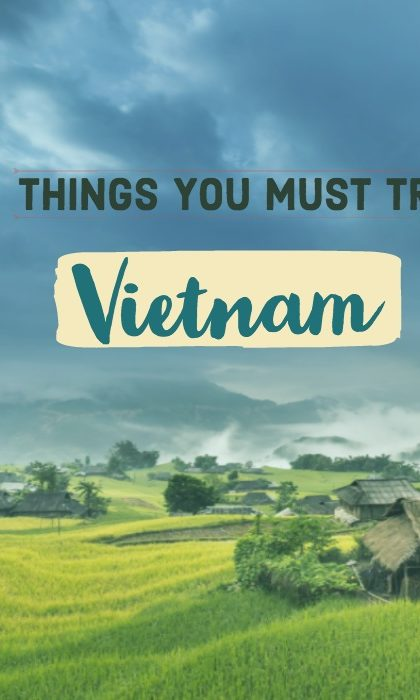 what to do in vietnam