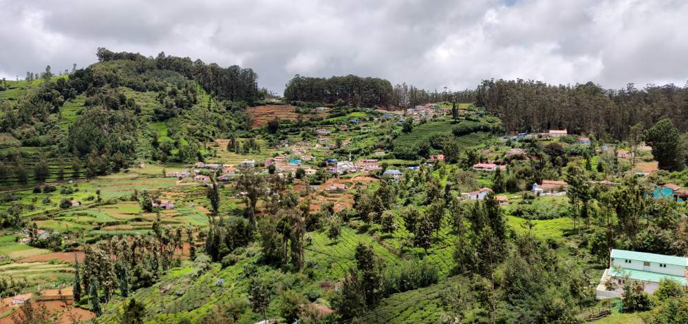 Sterling Ooty Fern Hill