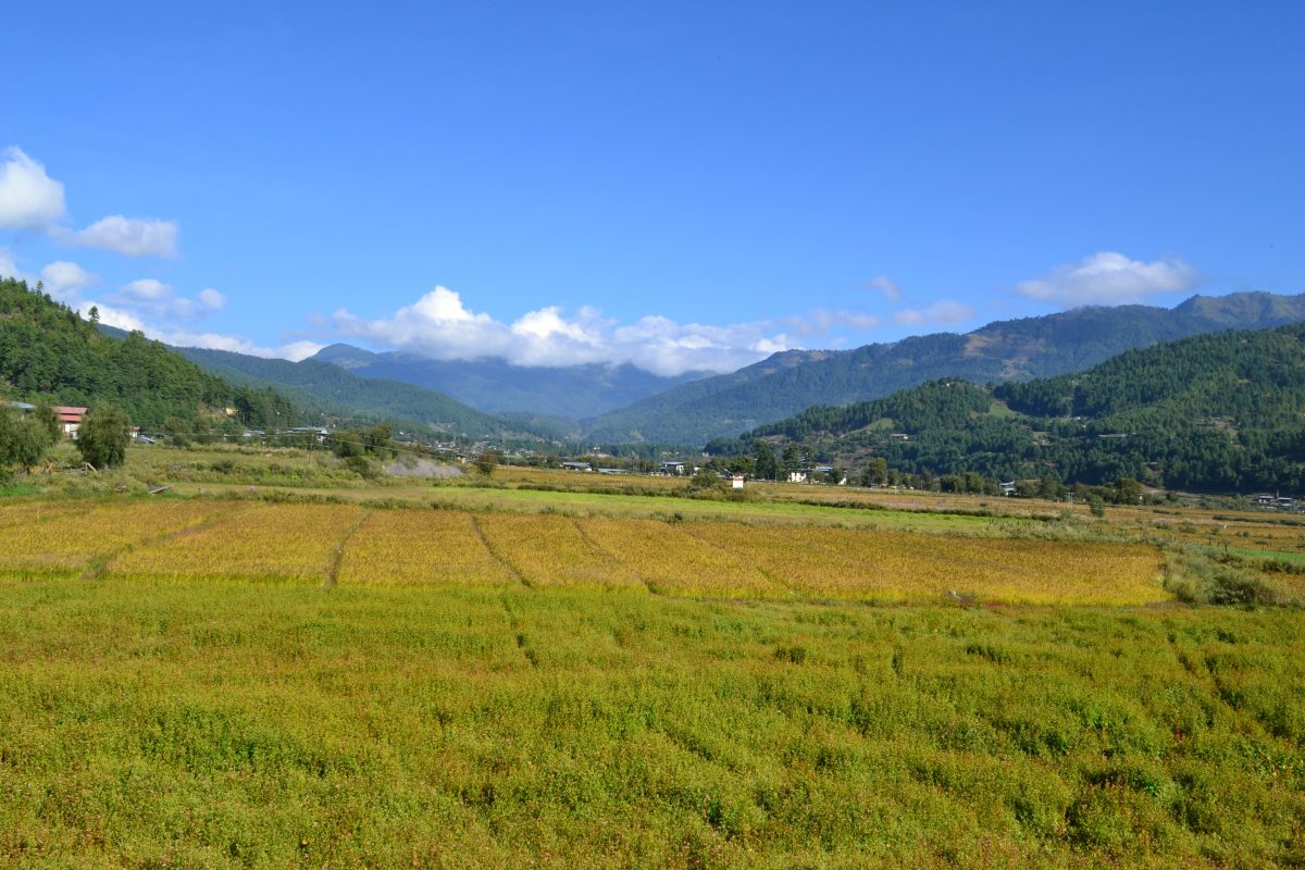 Best time to visit Bhutan