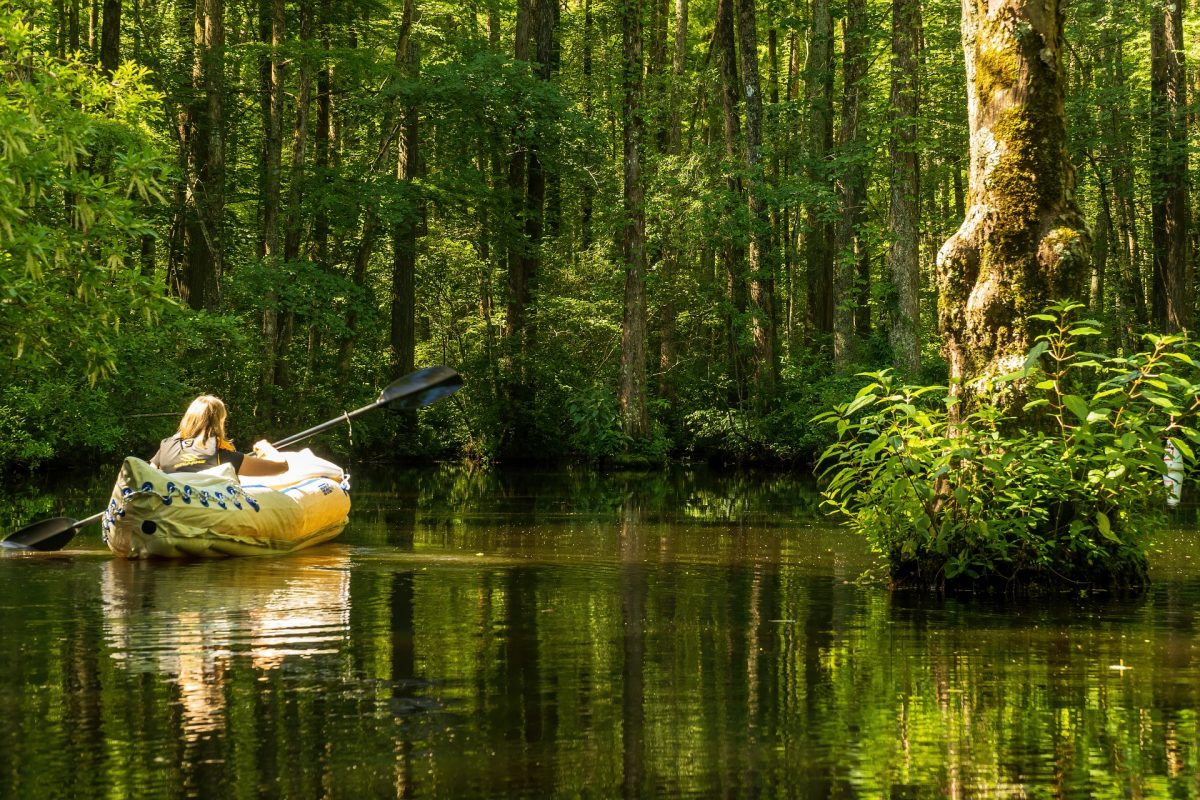 kayak or Canoe which is better