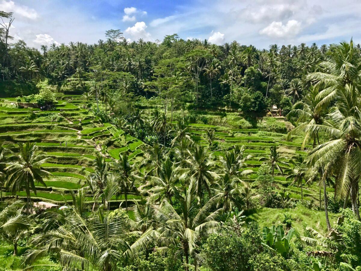 Bali hidden gems