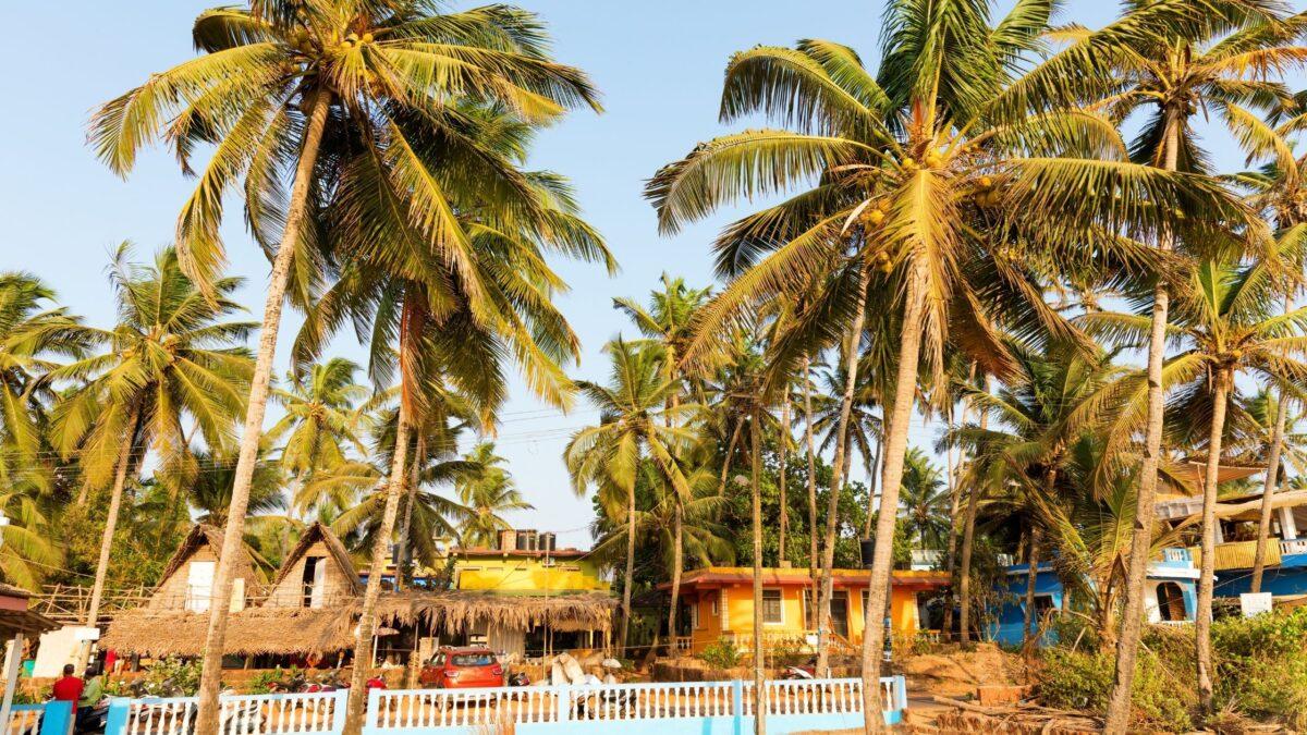 Goa solo female travel