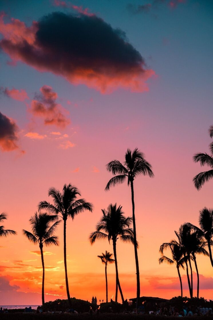 425 Sunset Captions For Instagram That Describe its Ultimate Beauty