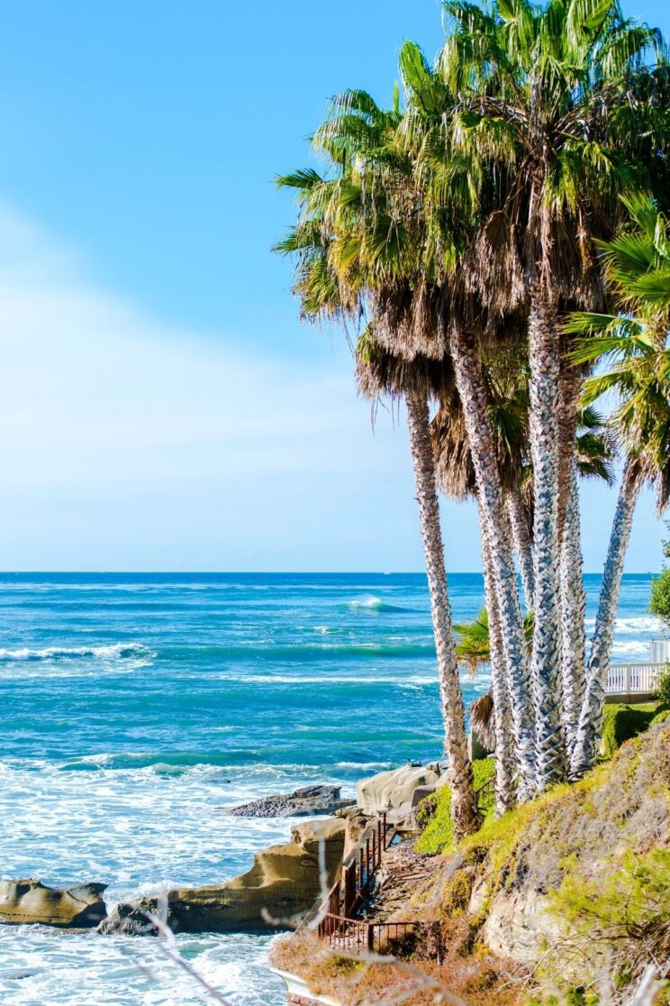 125 Quotes About California To Inspire A Trip & Captions for Instagram