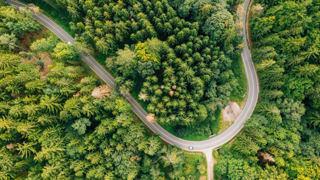 scenic drive quotes