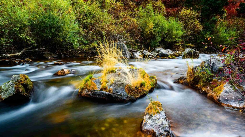 idaho places to visit