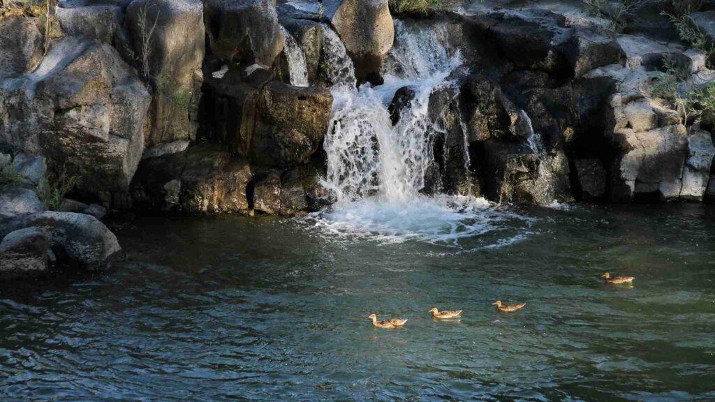 best waterfalls in Idaho