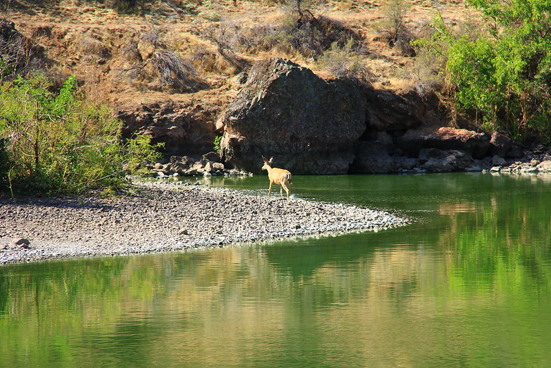 road trips from twin falls